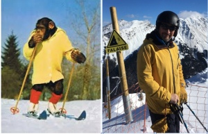 ignore you skiing inner chimp